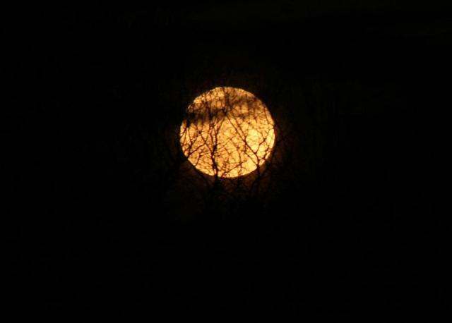 Moon - 4